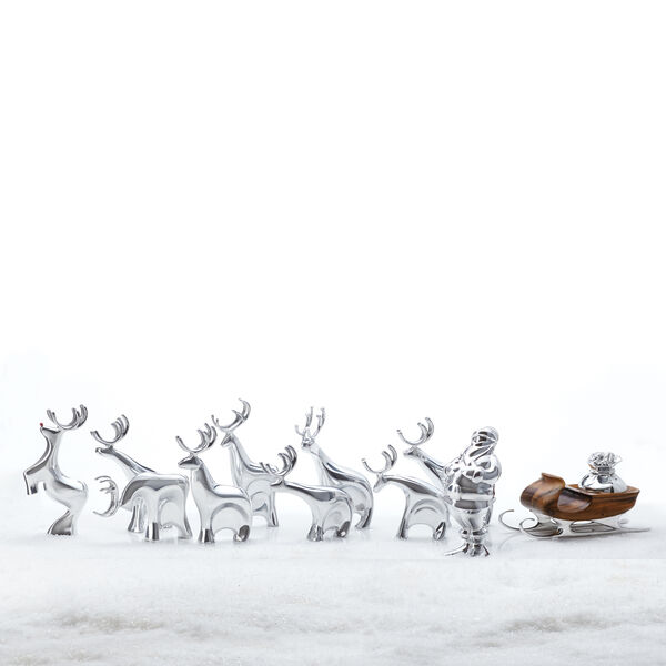 Reindeer Collection with Santa