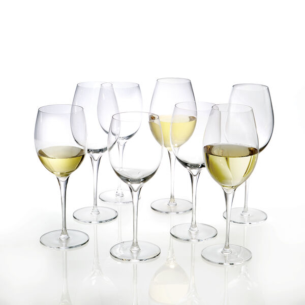 The White Wine Enthusiast Bundle (8 Pieces)